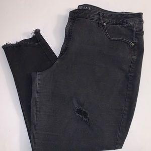 Lane Bryant Black Shark Bite Raw Edge Ankle Jeans
